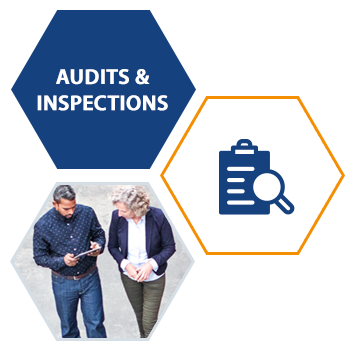 Audits and Inspections